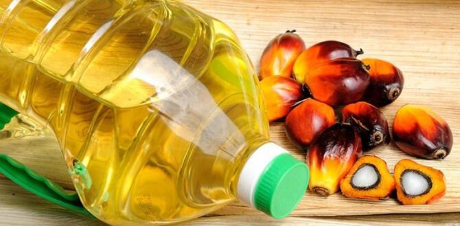 Birçok Gıdada Olan Palm Bitkisel Yağ Nedir?