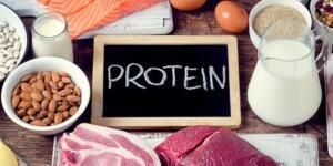 Protein İle Fazla Olan Kilolarınızı Azaltmak Mümkün mü?